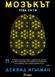 Мозъкът. Това си ти Дейвид Игълман